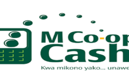 Mco-op cash loans, how to apply